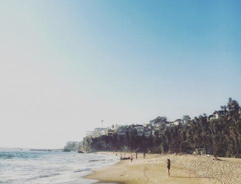 The Laguna and Newport Beach Guide