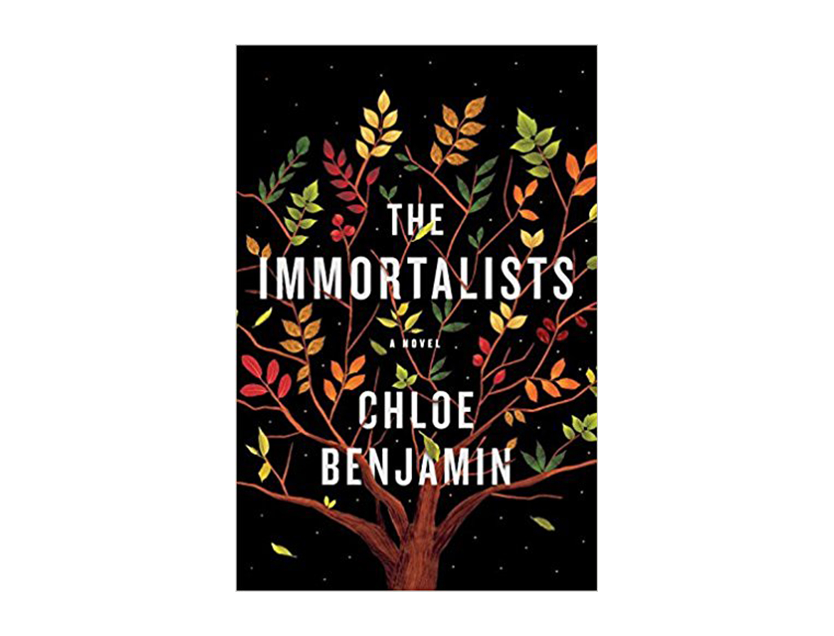 The Immortalists by Chloe Benjamin