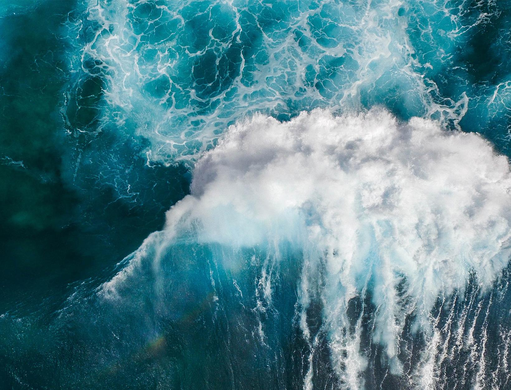 You Might Be Inhaling Bits of Toxic Algae