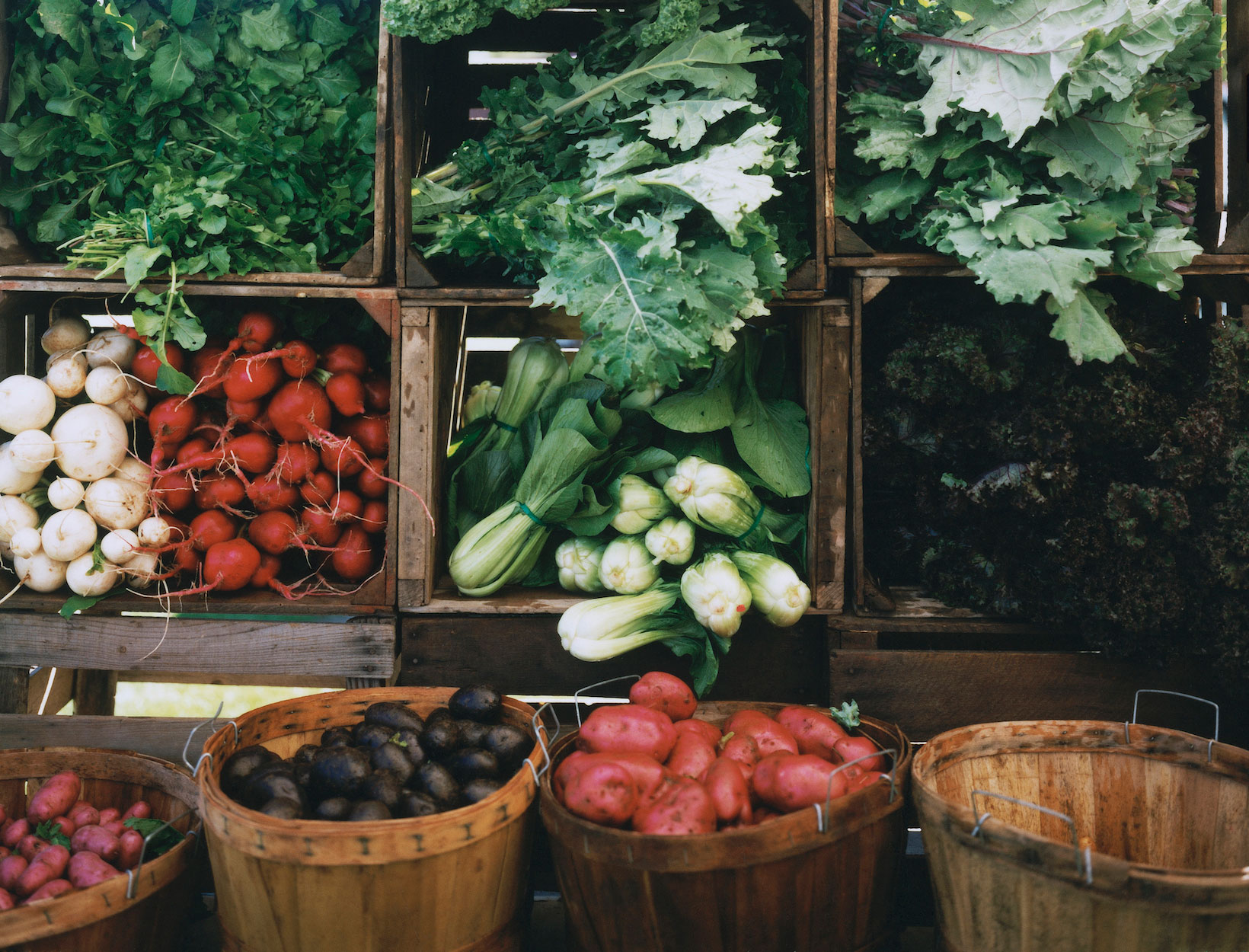 What to Consider If You Want to Go Vegan | Goop