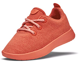 Allbirds SMALLBIRDS Sneakers