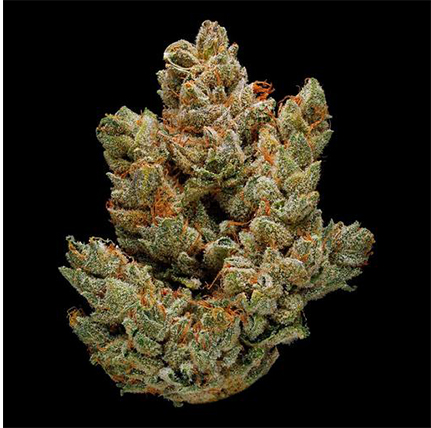 GREEN DOOR WEST Cannabis Delivery Service