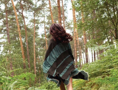 The Science—and Magic—of Forest Bathing