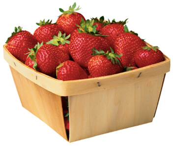 THORN FAMILY FARM strawberries