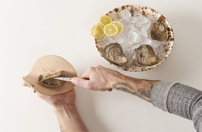 Oyster Shucking Set