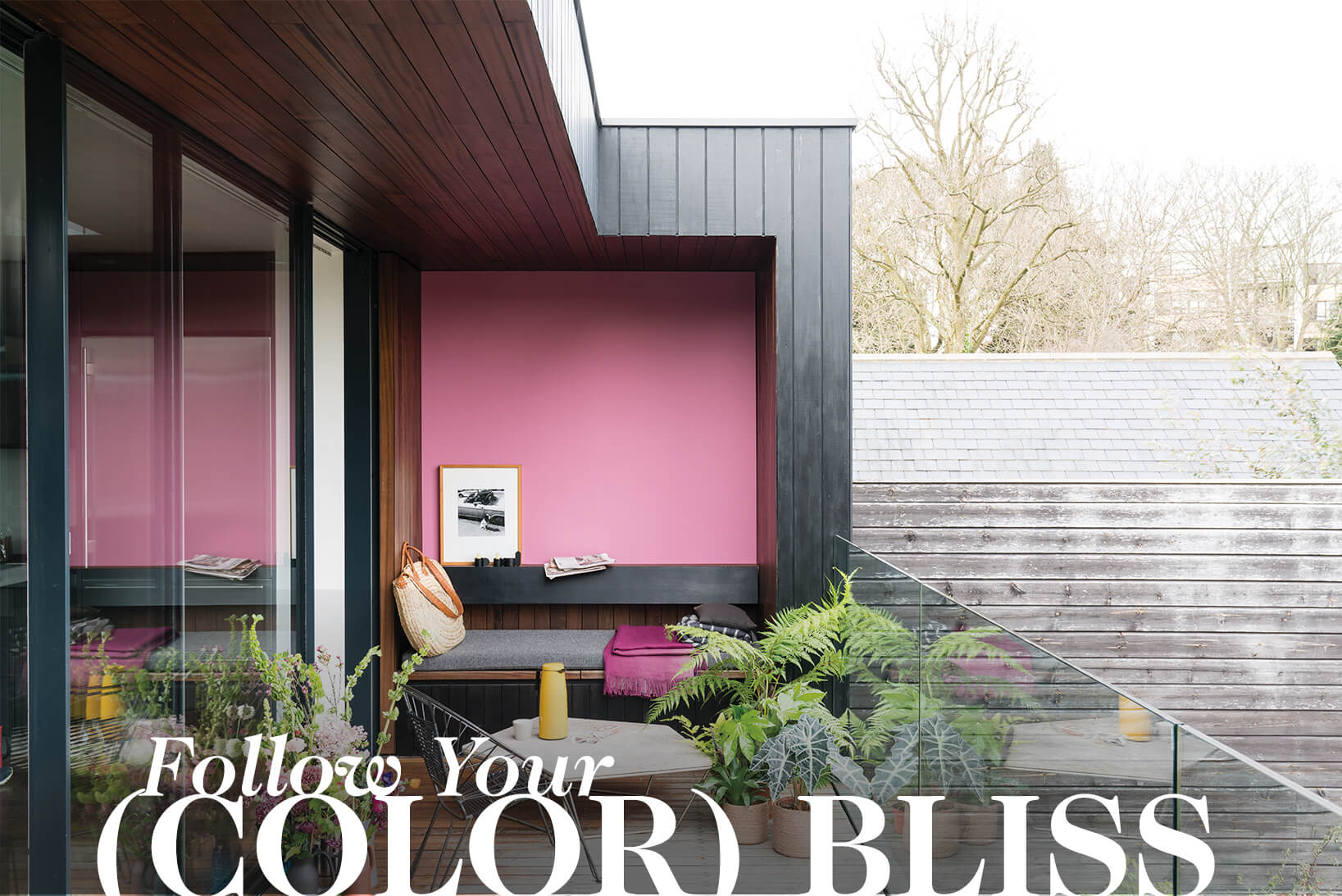 Follor Your (Color) Bliss