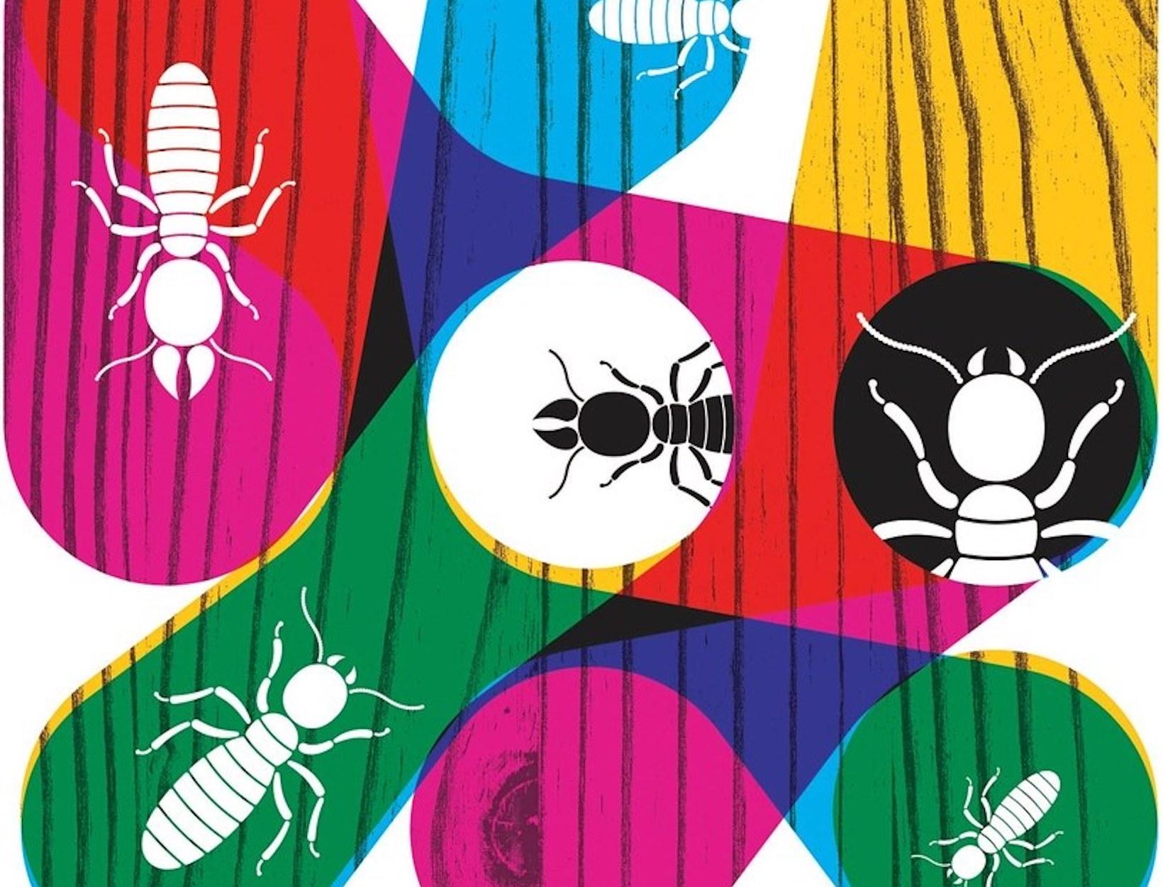 What Termites Can Teach Us