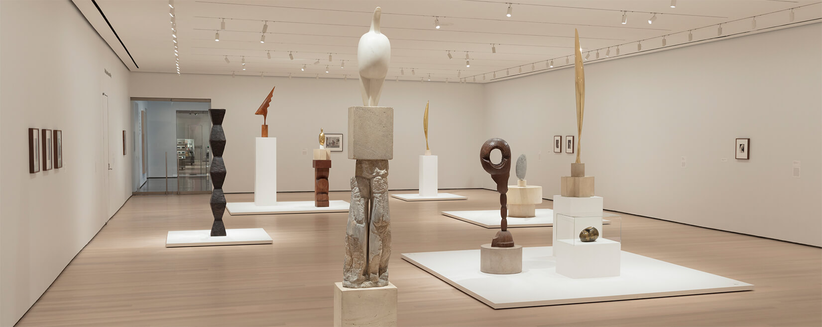 Installation view of Constantin Brancusi Sculpture