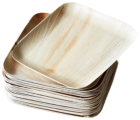 Verterra Compostable Plates