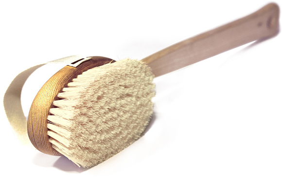 The Organic Pharmacy Skin Brush