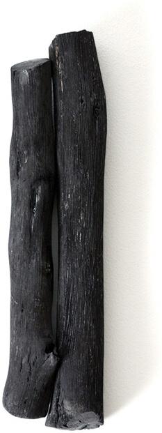 Charcoal Stick