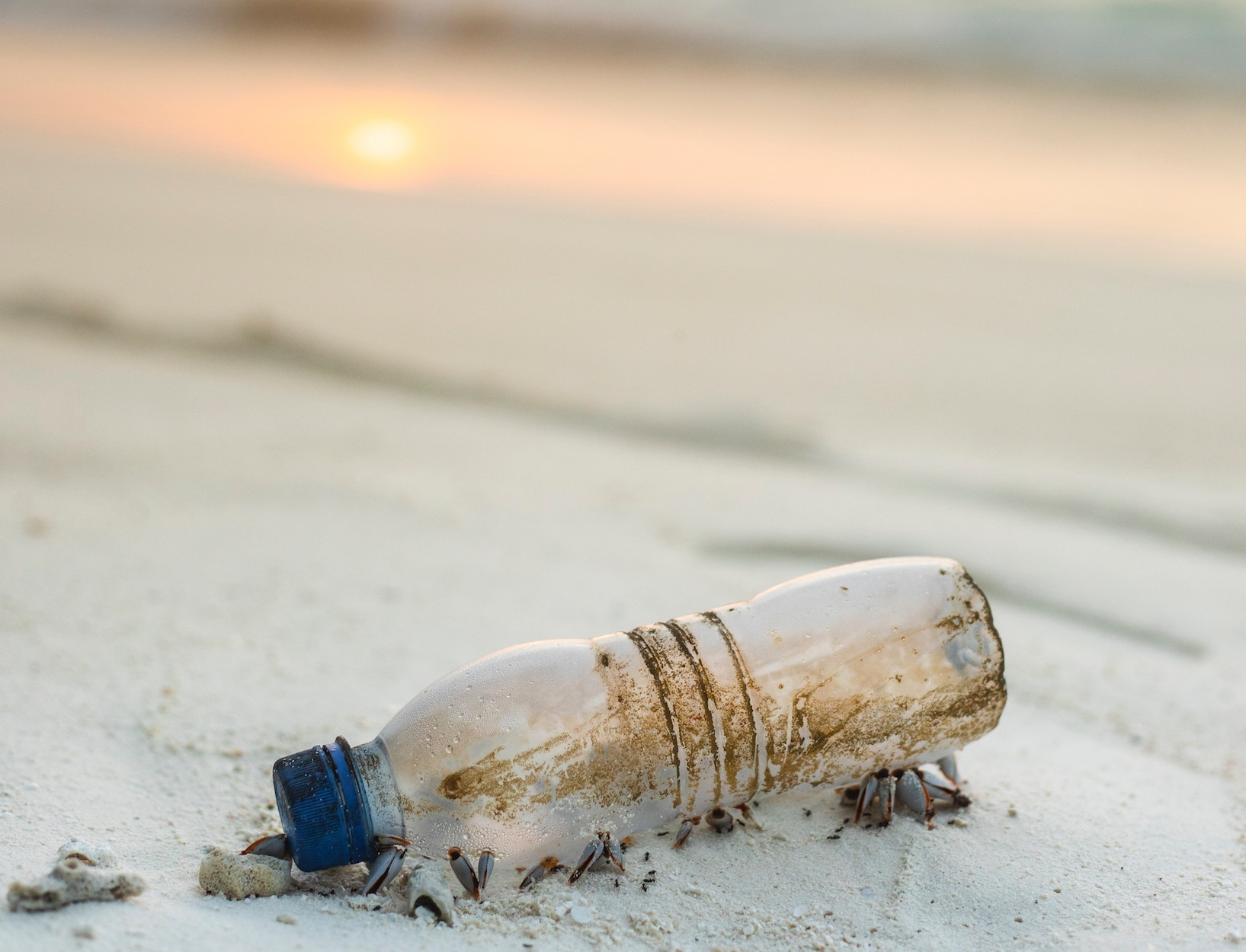 Microplastics Find Their Way into Your Gut, a Pilot Study Finds