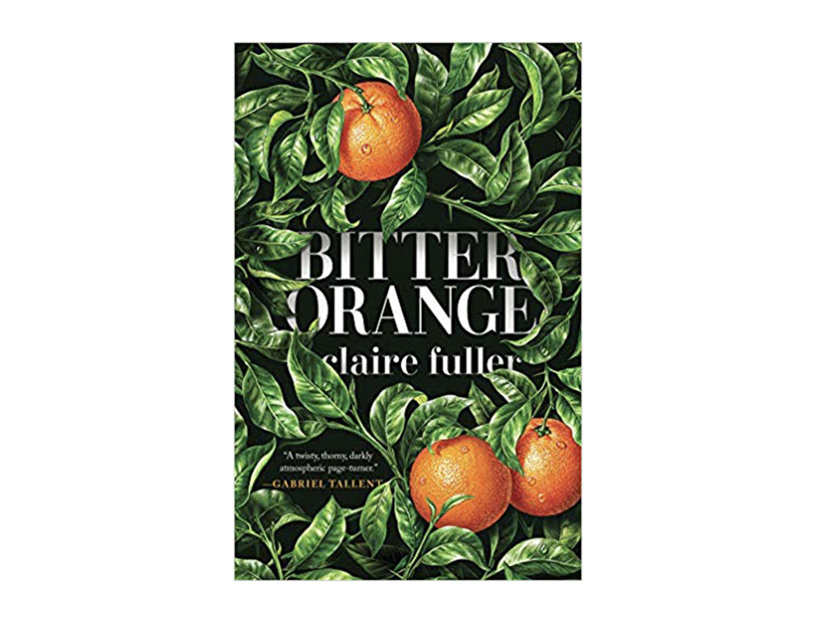 <em>Bitter Orange</em> by Claire Fuller