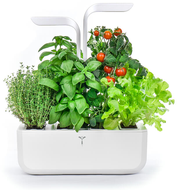 White Indoor Garden Kit