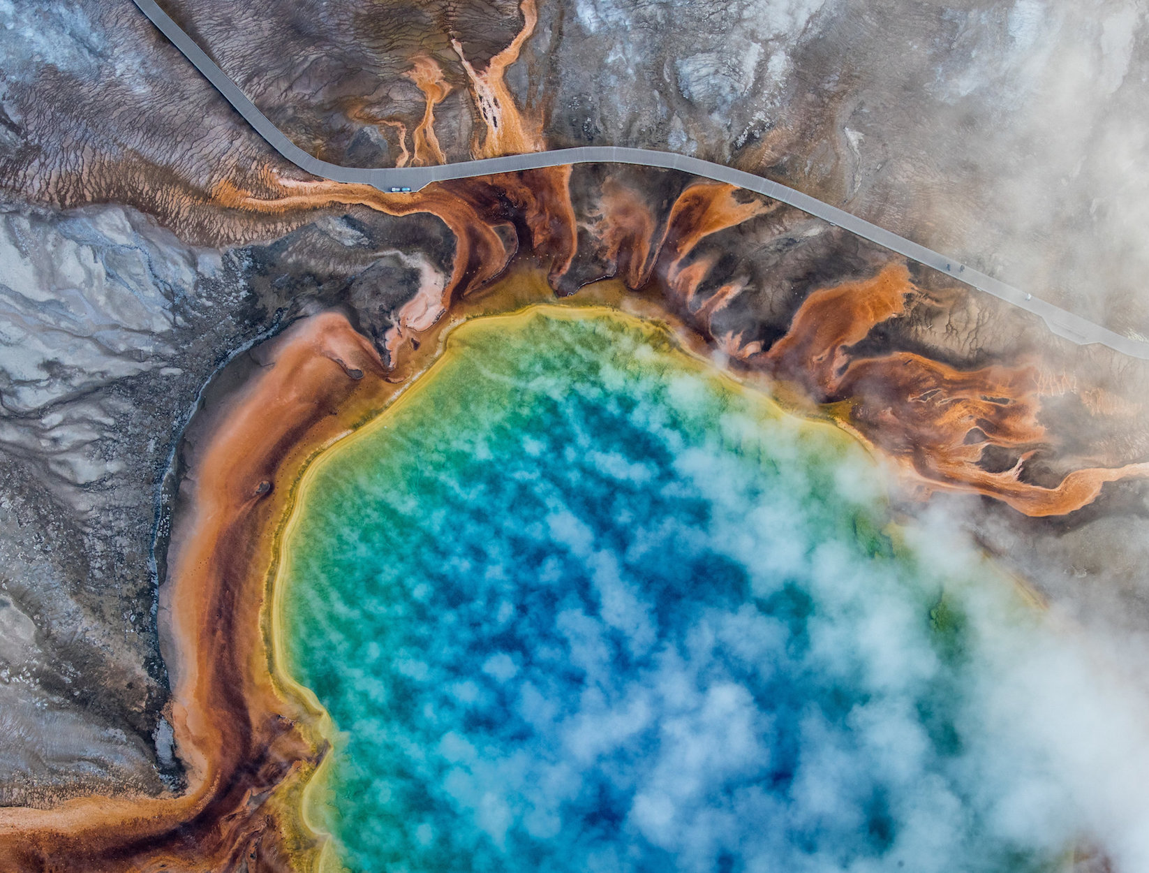 In Yellowstone National Park, Warming Has Brought Rapid Changes.