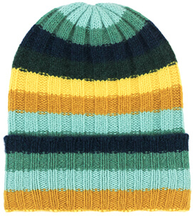 the elder statesman beanie