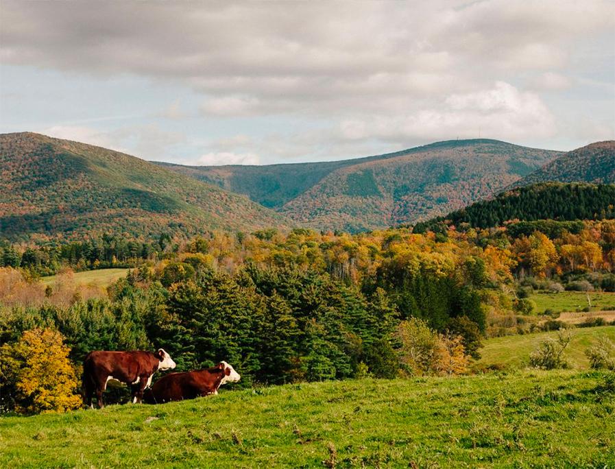 Travel Guide Berkshires, Massachusetts