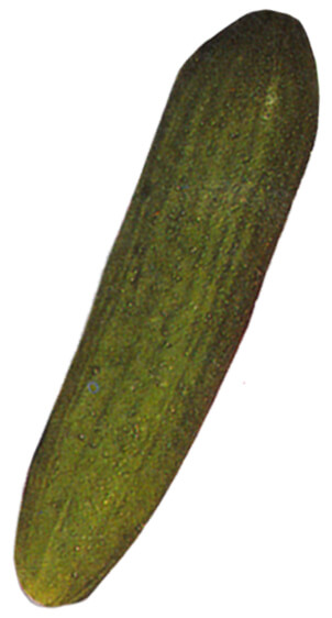 Detox Teriyaki Salmon Sheet Pan
