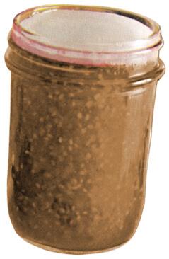 diy instant oats