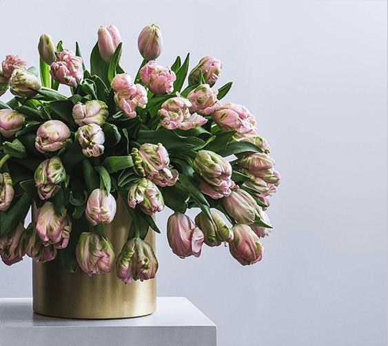 flowerbx easter-plinths-pink-tulips bouquet