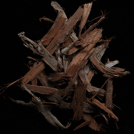 goop Fragrance Incense Cedar