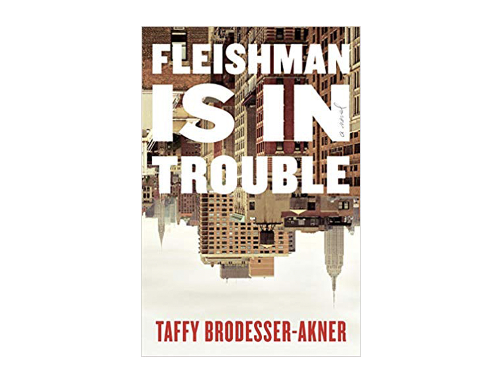 <em>Fleishman Is in Trouble</em> by Taffy Brodesser-Akner
