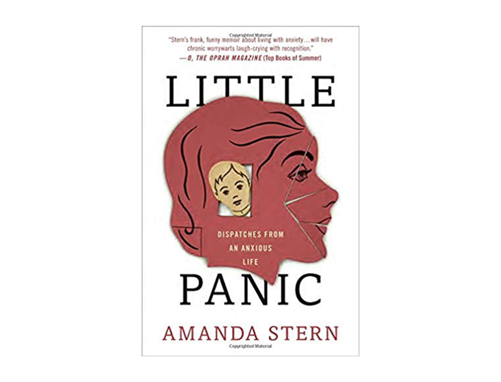 <em>Little Panic </em>by Amanda Stern
