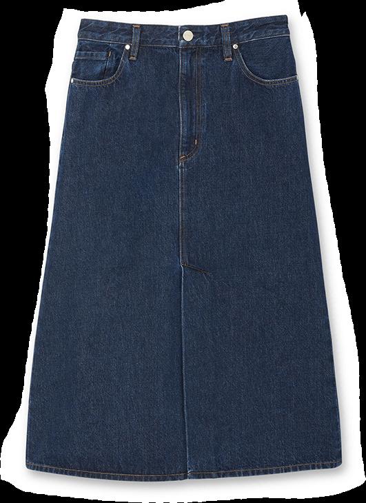 Goldsign Skirt