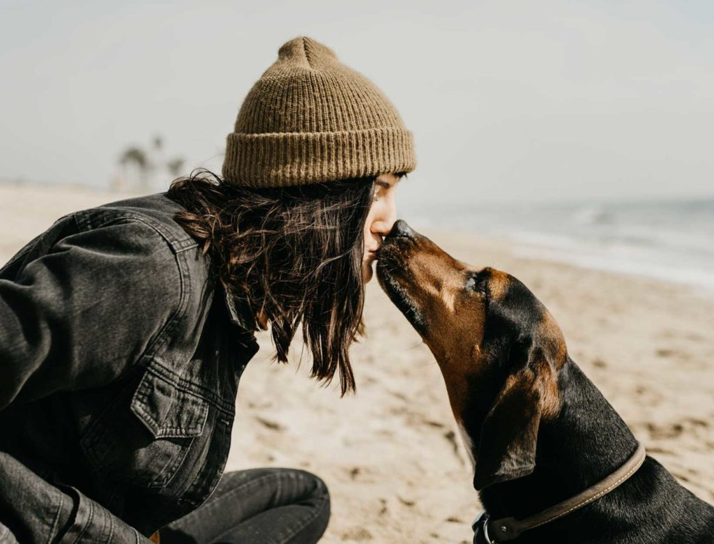 The Health Benefits of Owning a Dog + Other Stories