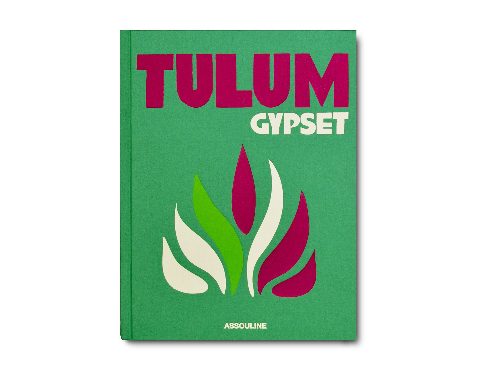 <em>Tulum Gypset</em> by Julia Chaplin