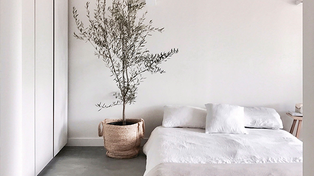 Home, Clean Home hosted by Avocado Mattress
