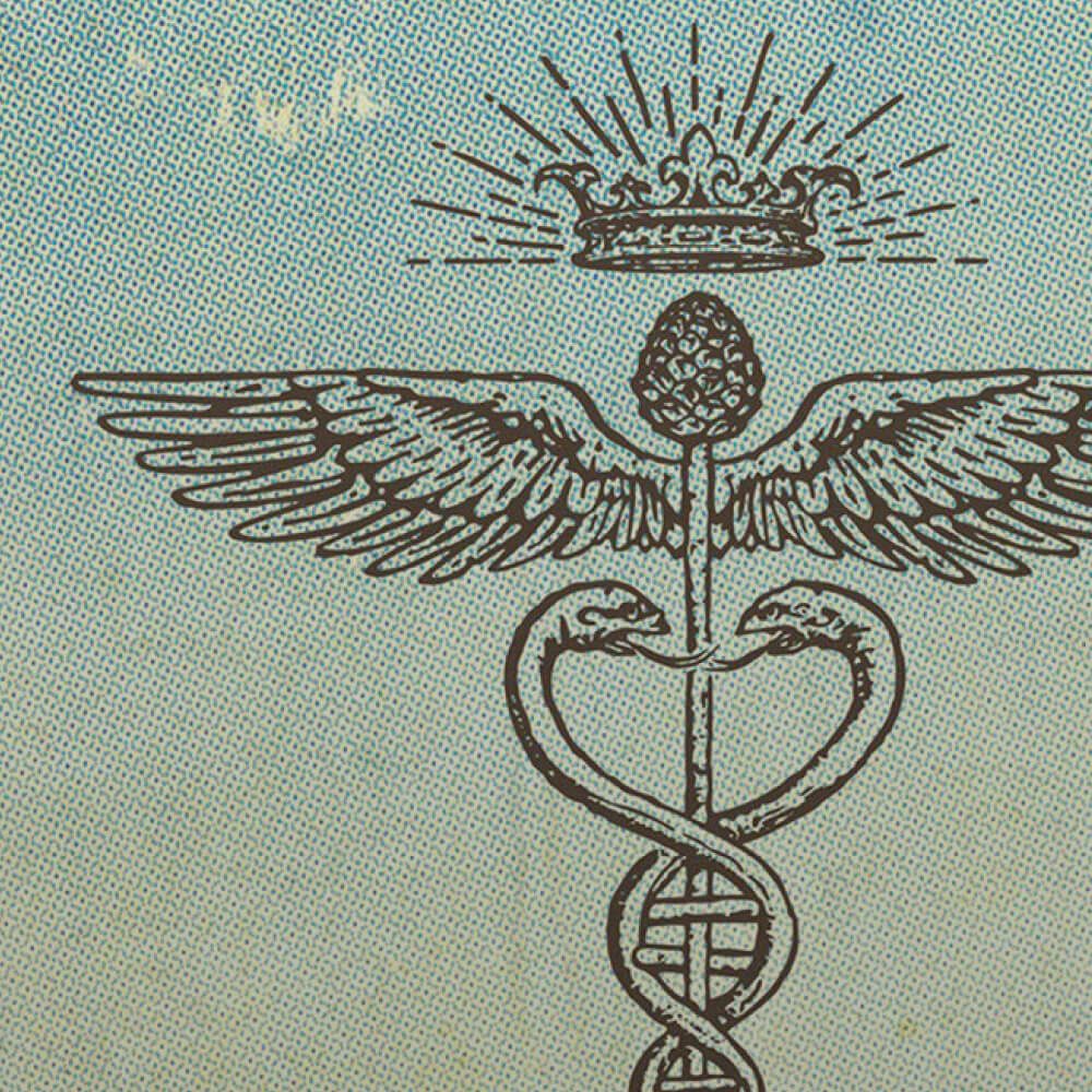 cobras symbol