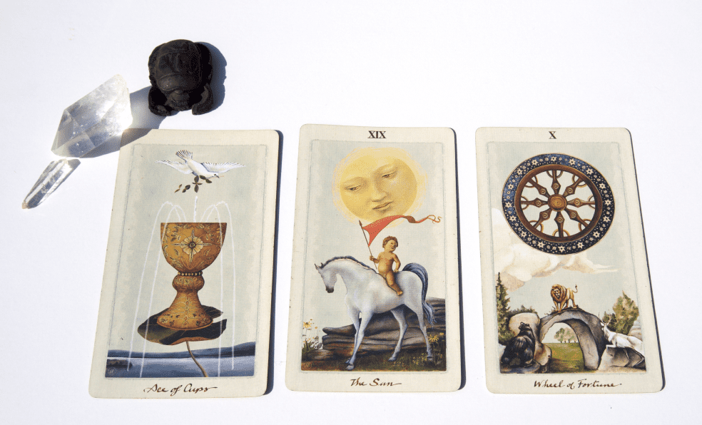 Wild Wisdoms Three Card Tarot Spread with Sofie Lyddon (In-Person or Email)