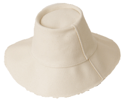 The Hatters hat