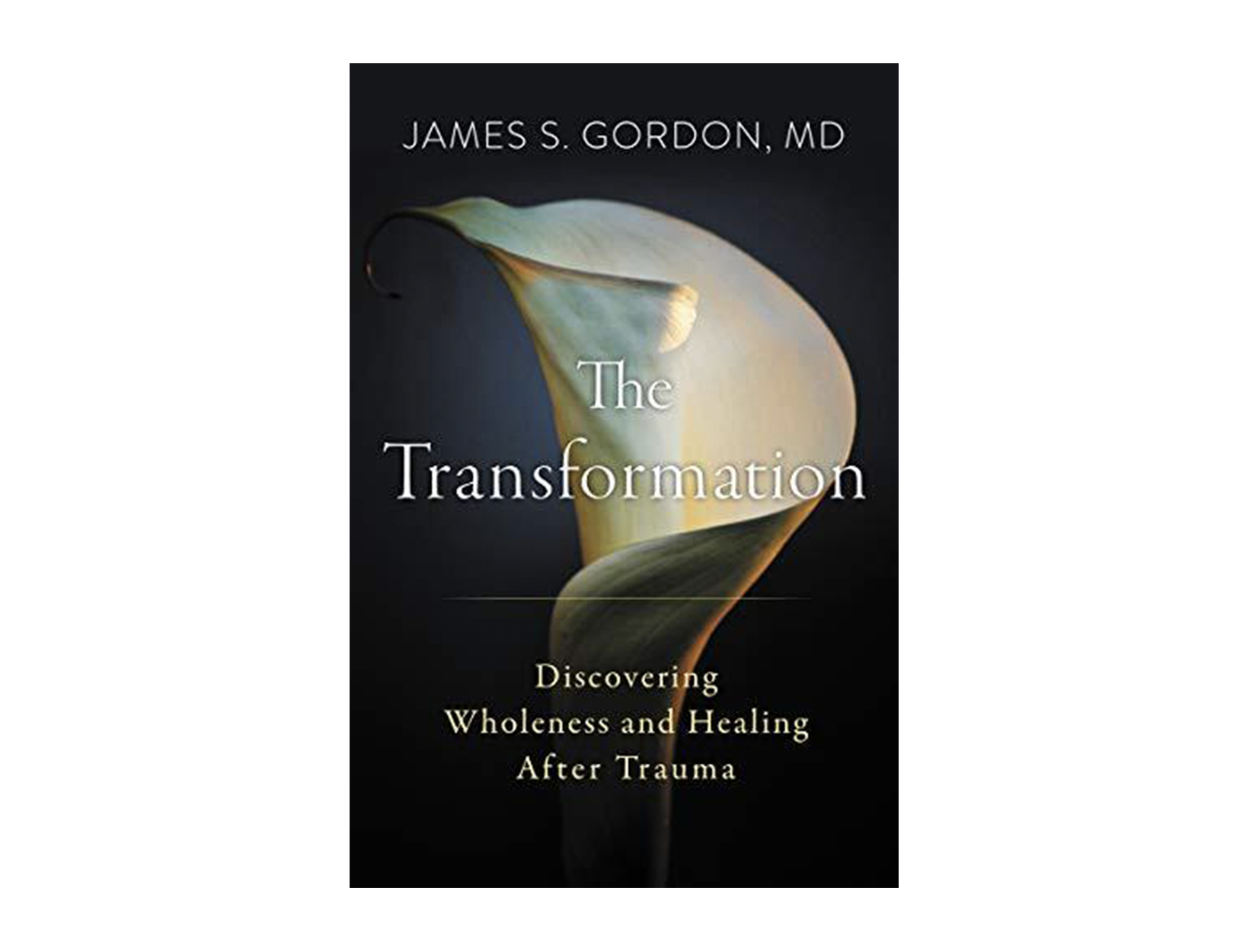 <em>The Transformation</em> by James Gordon, MD