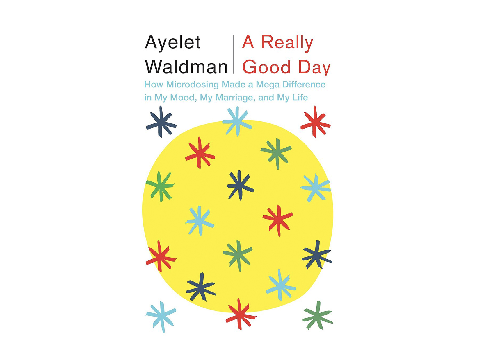 <em>A Really Good Day</em> by Ayelet Waldman