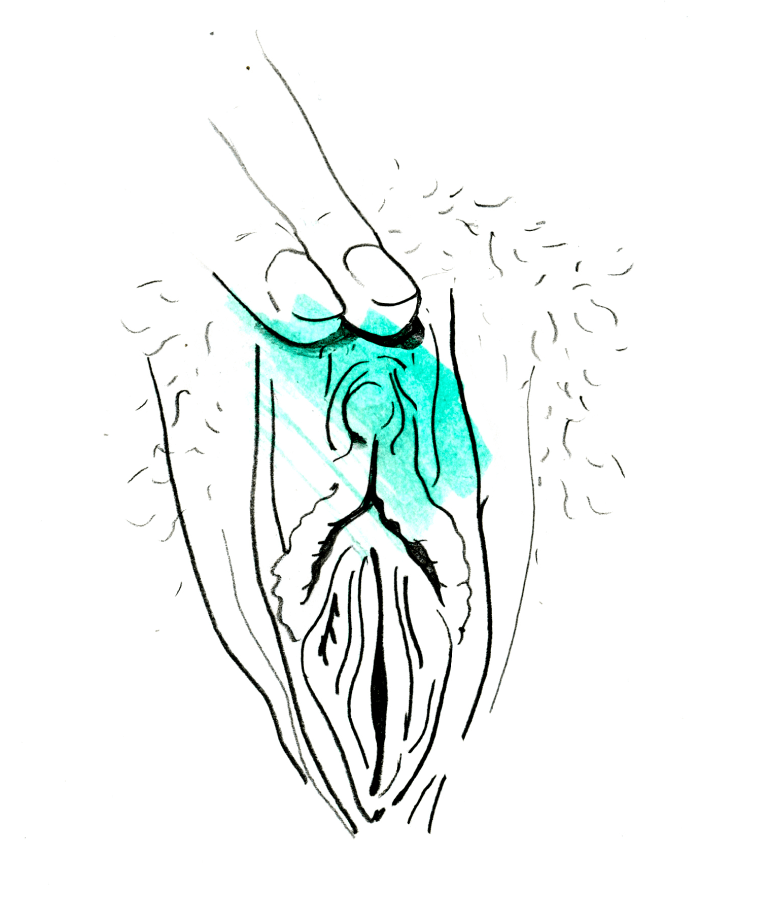 clitóris
