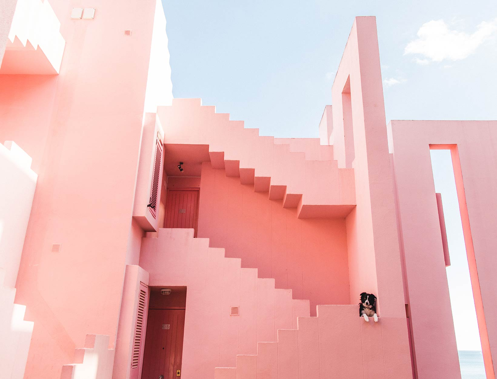 pink building with dog
