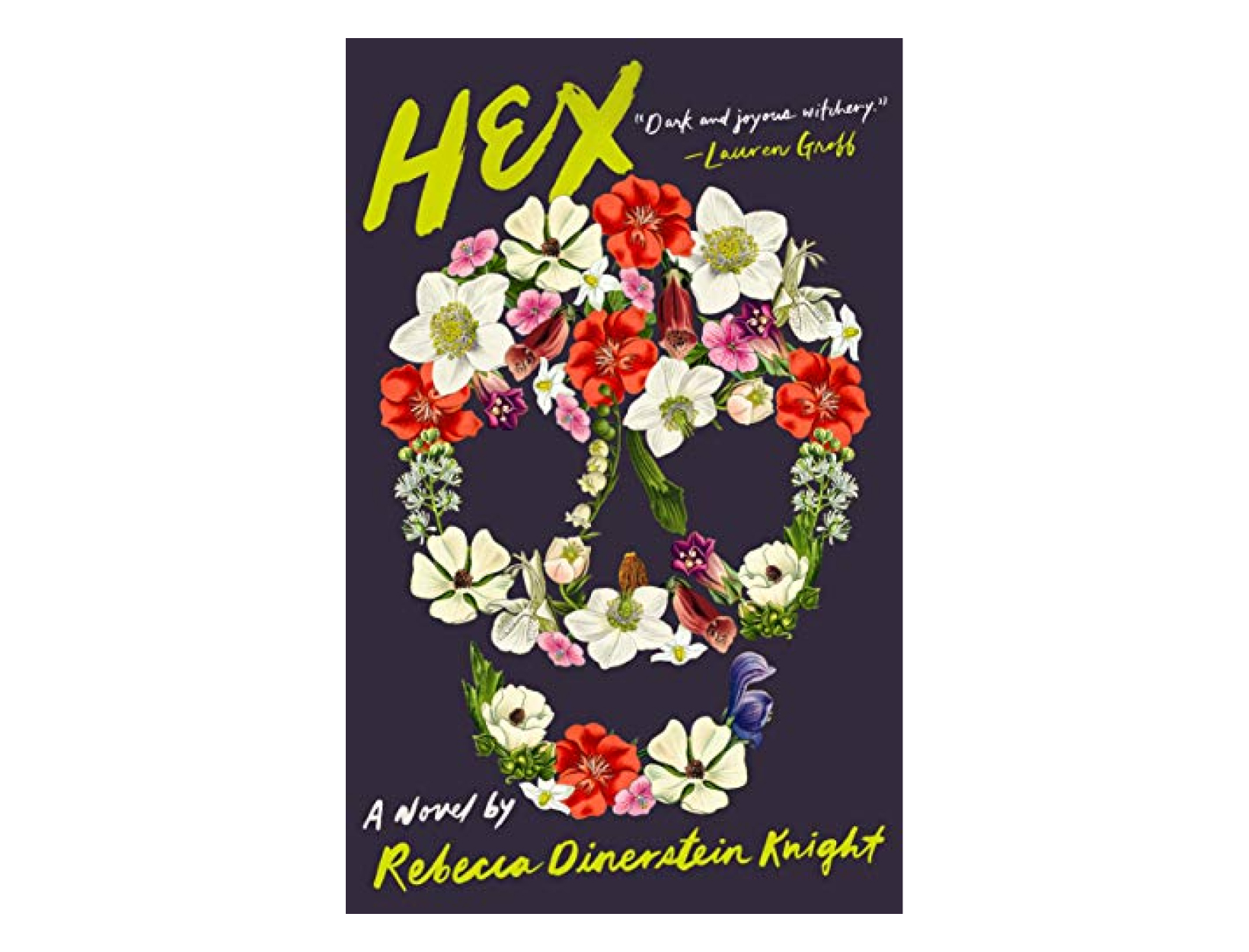 <em>Hex</em> by Rebecca Dinerstein Knight