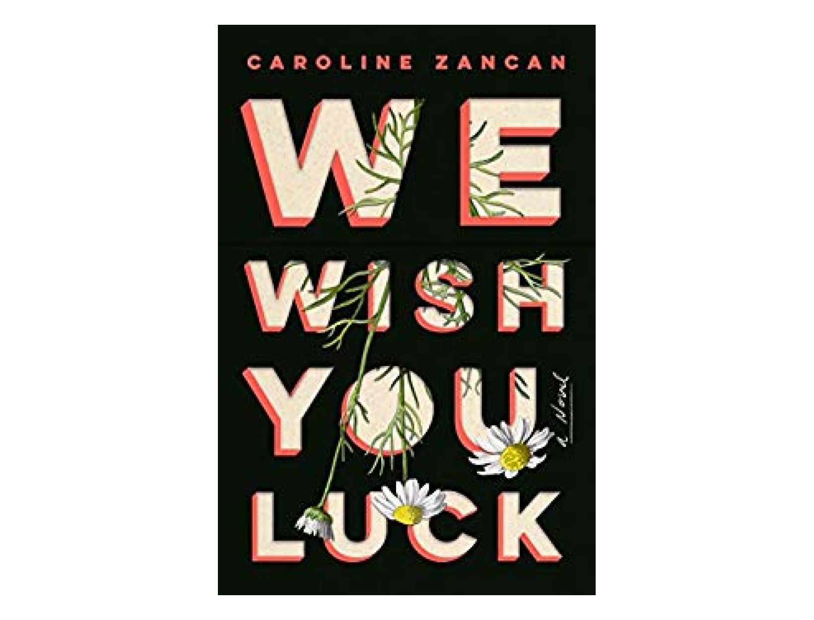 <em>We Wish You Luck</em> by CarolineZancan