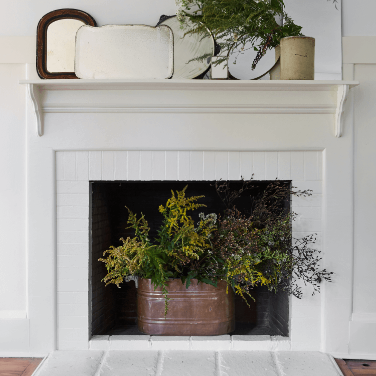 dormant fireplace with plants in it