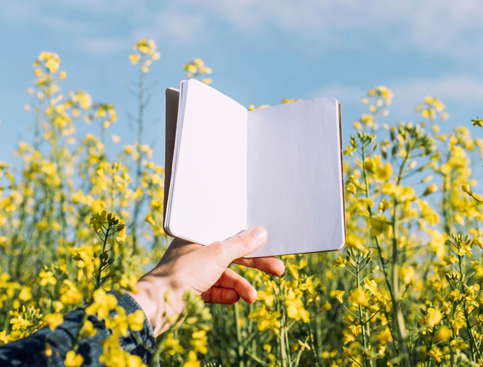 hand holding a journal amongst flowers