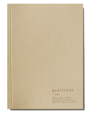 An Organised Life Gratitude Lined Notebook