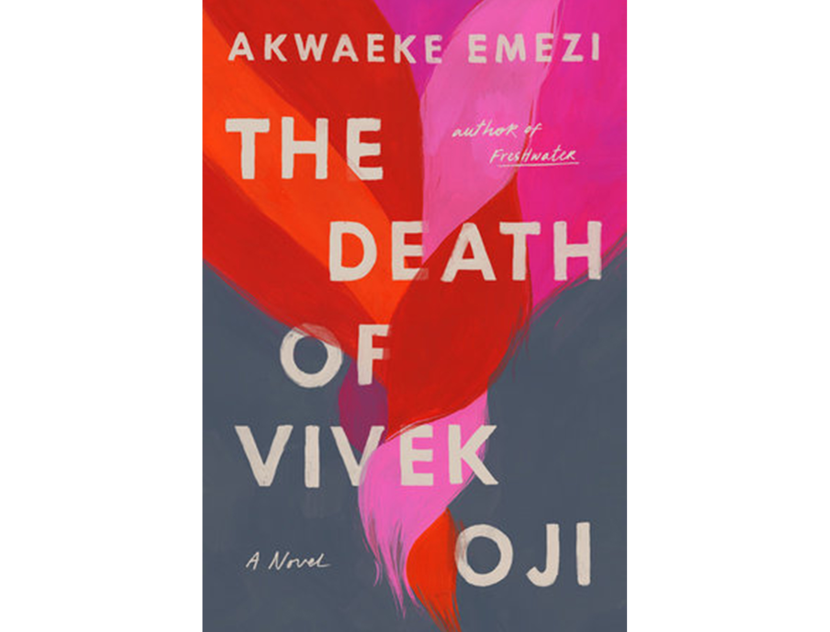 <em>The Death of Vivek Oji</em> by Akwaeke Emezi