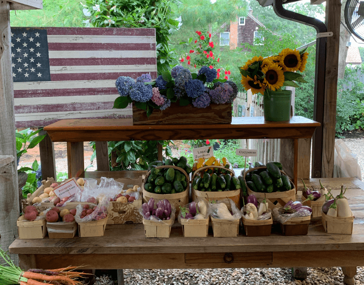 MARKET IN HAMPTONS