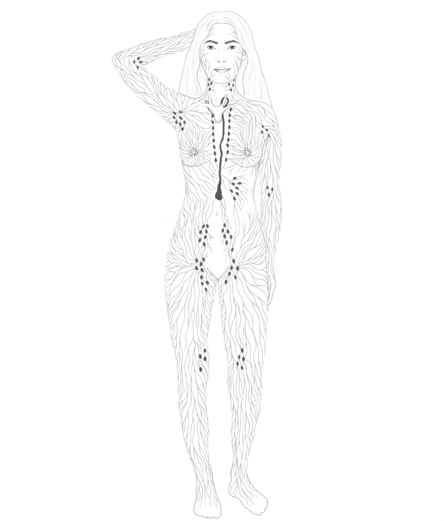 lymphatic map of the body