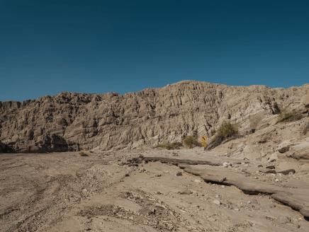 Desert X desert x 2021 exhibition