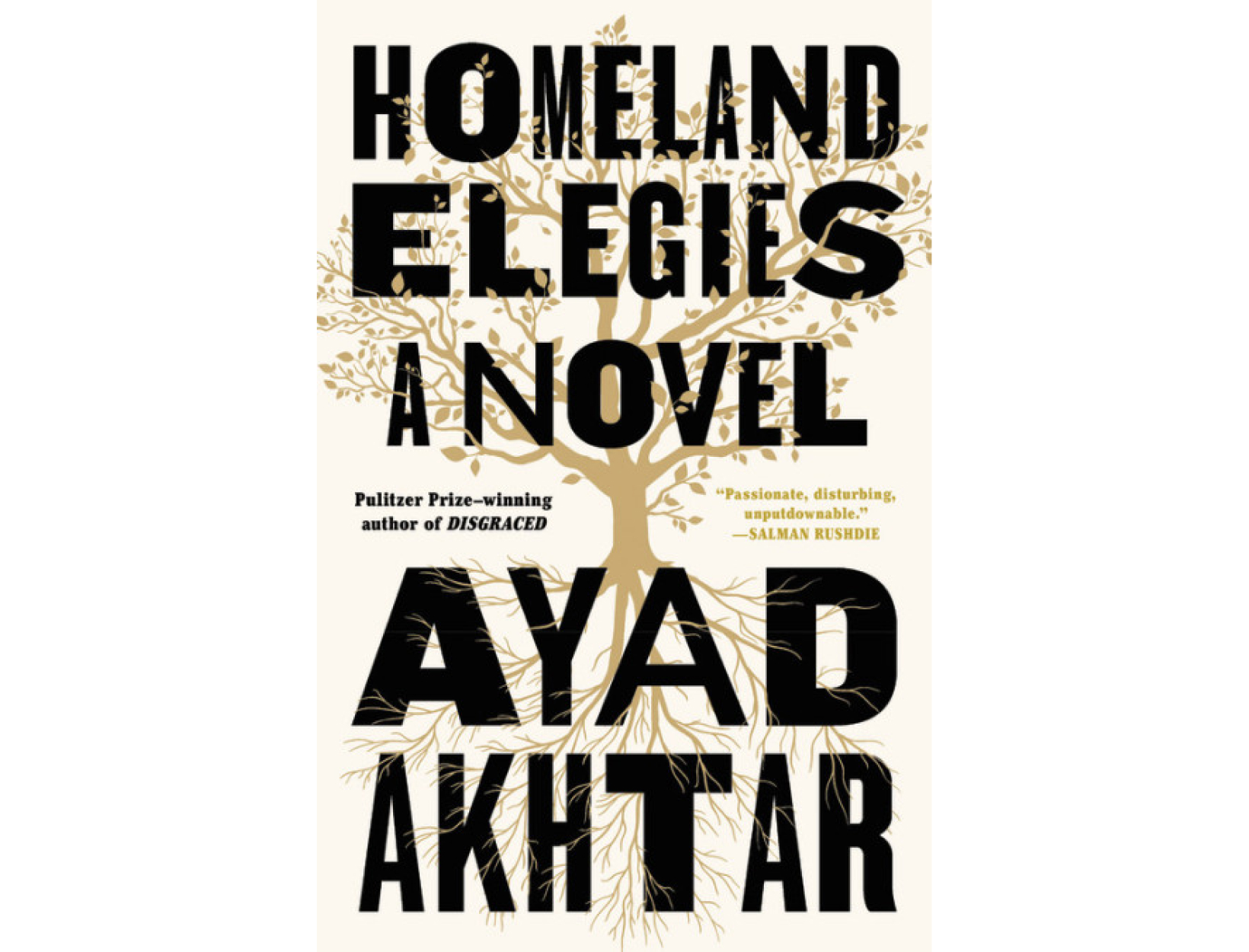 <em>Homeland Elegies</em> by Ayad Akhtar