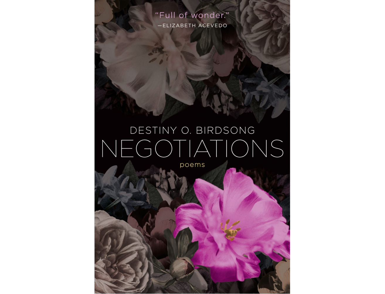 <em>Negotiations</em> by Destiny O. Birdsong