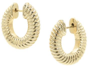 Bondeye Jewelry earrings